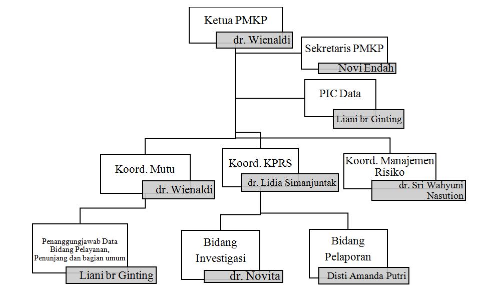 Struktur PMKP RSU Royal Prima